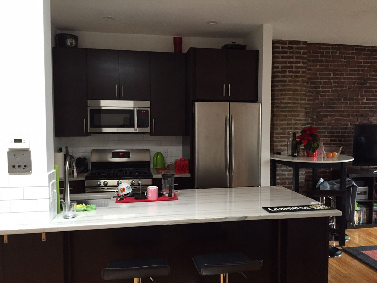 Warren Ave Boston Kitchen Remodel
